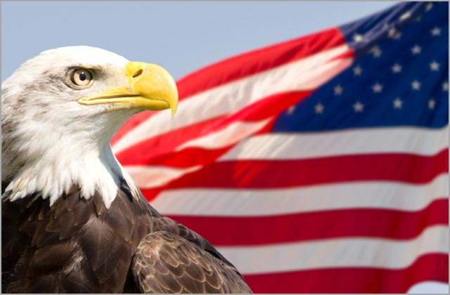us-flag-eagle